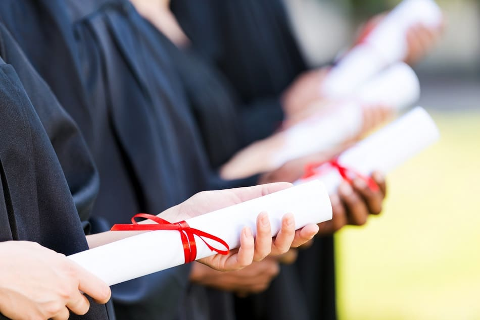 Master's Dissertation Proofreading Services